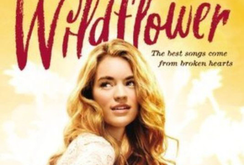 'Wildflower' is like ABC's 'Nashville' for teens